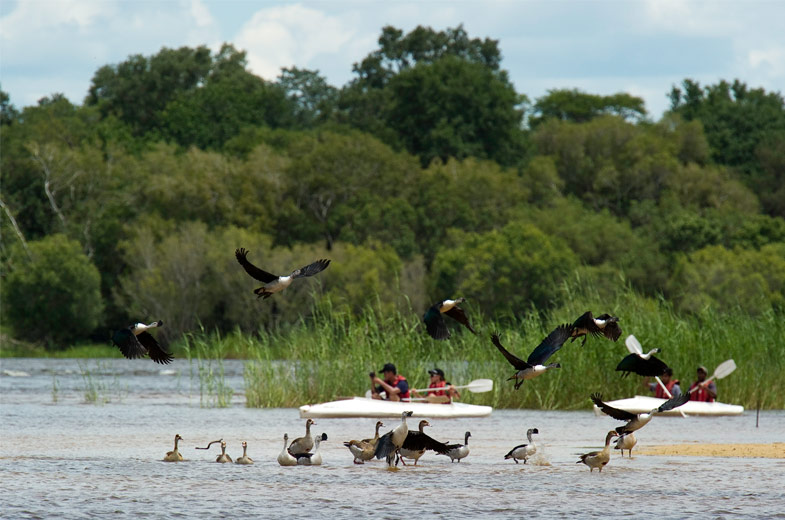 Zambezi Canoe Trails